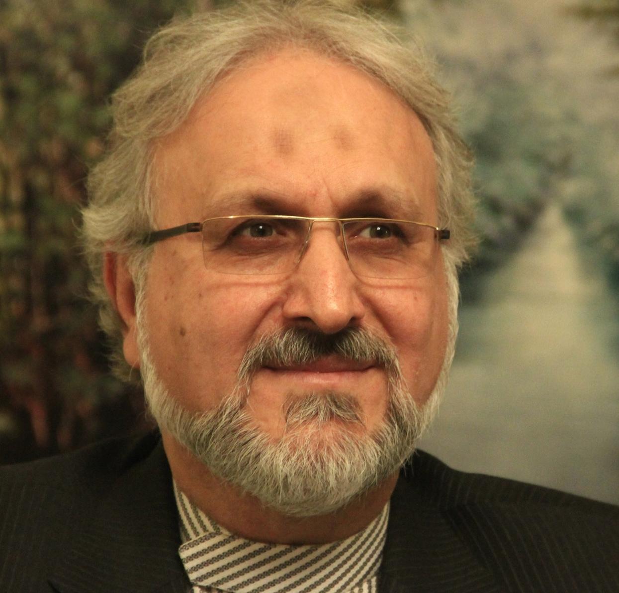سید محسن نبوی